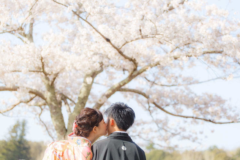 奈良公園 浮見堂 和装 前撮り 桜 キス